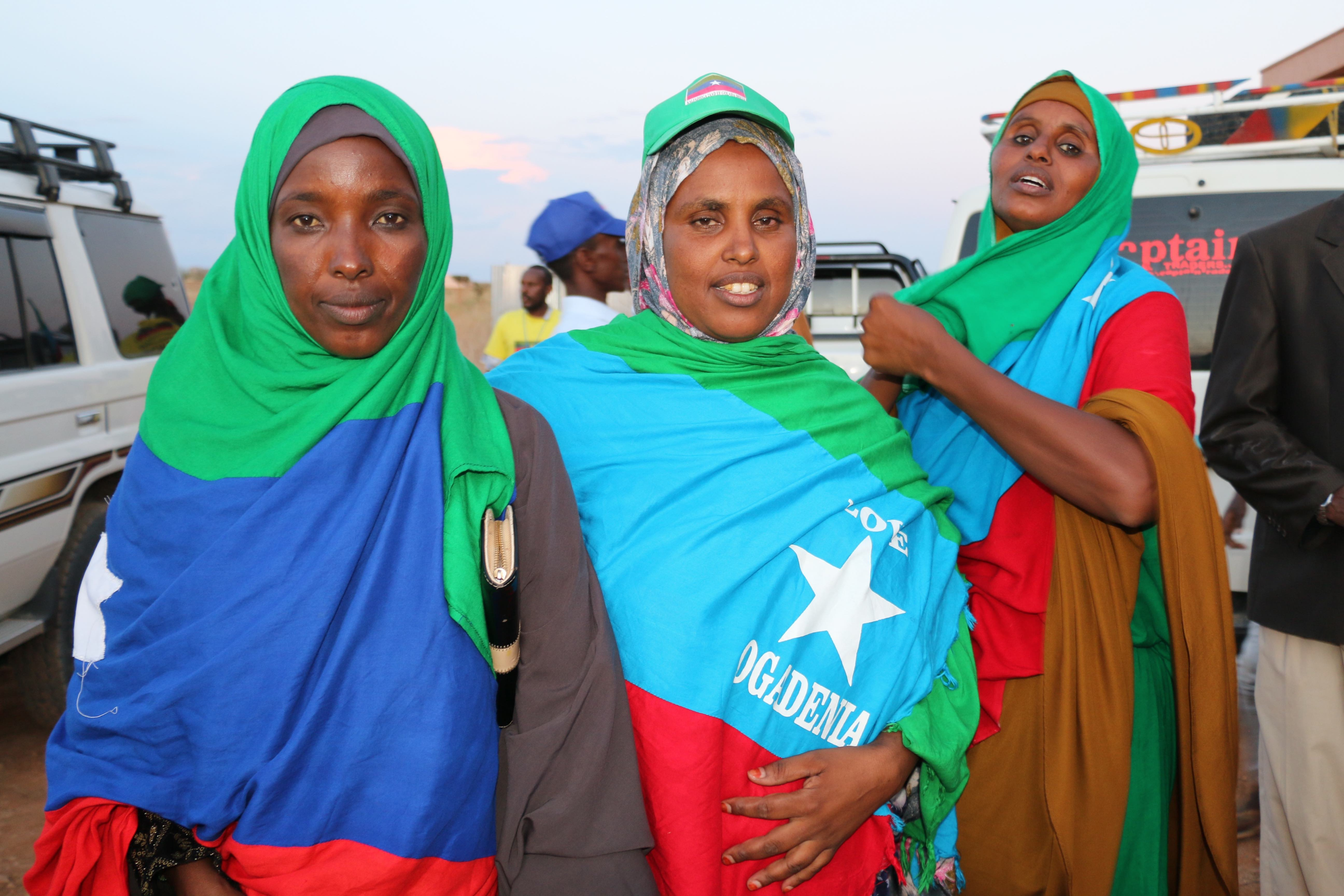 Participants bearing the Ogaden flag at a conference organised by the Ogaden National Liberation Front (ONLF) to discuss its peace deal with the Ethiopian government and transition from an armed group to a political party, April 2019. © Conciliation Resources