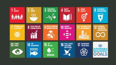 Sustainable development goals logos